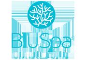 BluSpa Jupiter